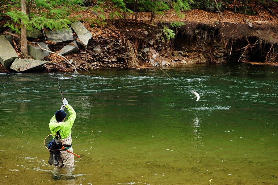 Gostilna-LIPAN - Rečni ribolov